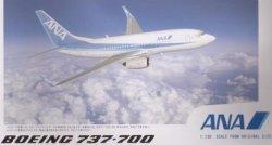 画像1: B737-700 ANA サウンドジェット