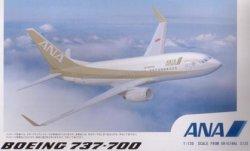 画像1: B737-700 ANA ゴールドジェット サウンドジェット